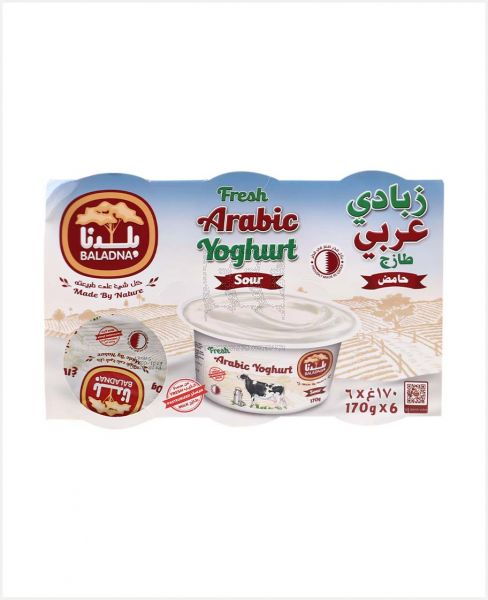 Baladna Arabic Yogurt 170gm 5+1 Free